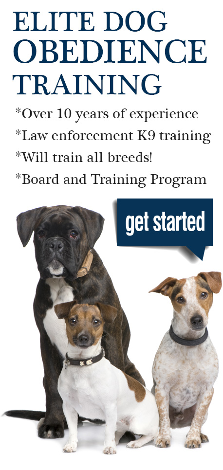 K 9 Goose Control Elite dog obedience training